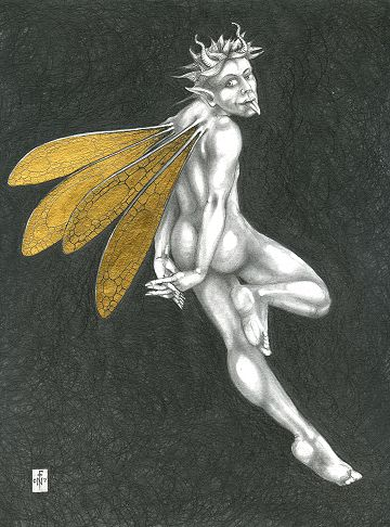 Gold Fairy 33 - drawing by nancy Farmer