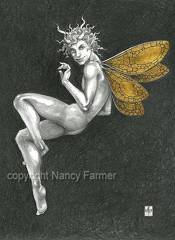 Gold Fairy 34 - drawing by nancy Farmer