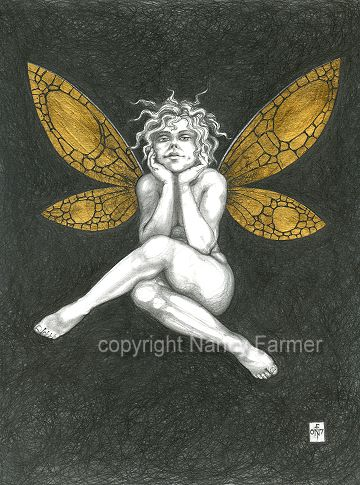 Gold Fairy 35 - drawing by nancy Farmer
