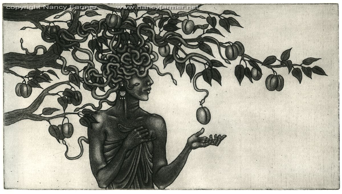 'Medusa in the Plum Tree' - Etching