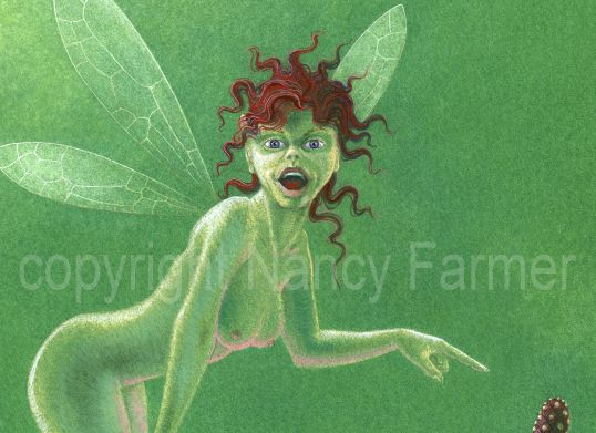 Pistils and Stamens 1 - rude flower fairies by Nancy Farmer