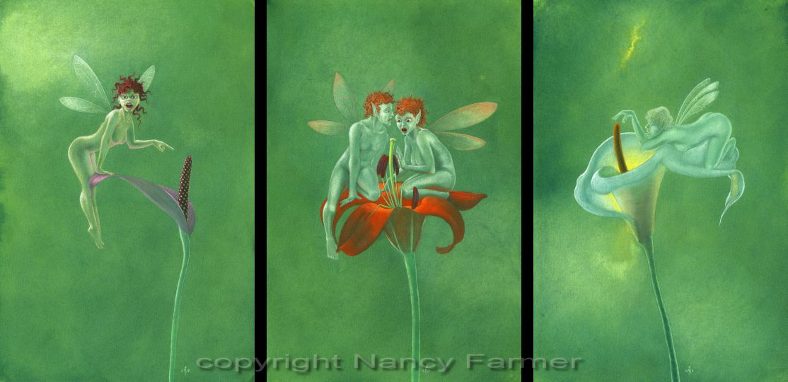 Pistils and Stamens - a triptych of rude flower fairies