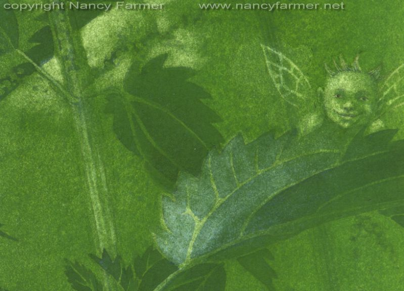'Urtica Dioica, Stinging Nettle Fairies' - painting in gouache by Nancy Farmer